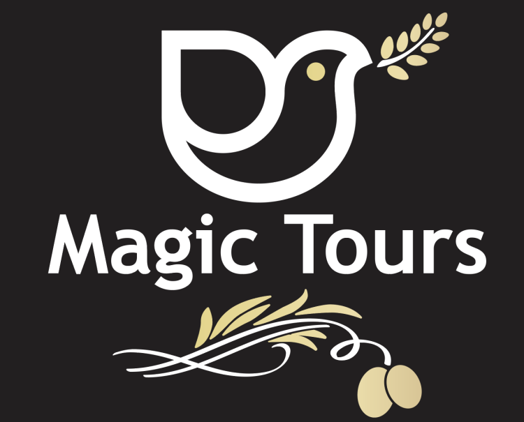 MAGIC EVENT & WINE TOURS **** 415-524-6867 .SPRINTER VANS and Sedans. call or text 24/7. Napa, Sonoma, SF Bay Events. Best Rates. Magictoursnapa@yahoo.com
